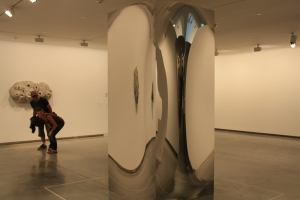 anish_kapoor_09