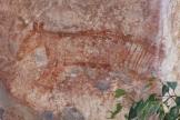 Thylacine rock art, Ubirr Rock Kakadu