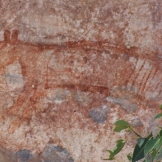 Thylacine rock art, Ubirr Rock Kakadu