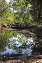 Creek, near Davidson's Safari Lodge Arnhemland