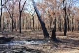 Near Davidson's Safari Lodge, Arnhemland