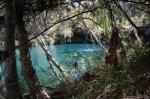 Fern Pool, Karijini