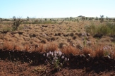 26_toward_Karratha