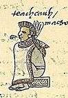 Codex Mendoza Folio 61 r (detail)