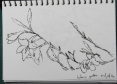 sketch20161022b